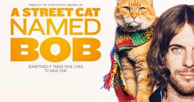 A Street Cat Named Bob Banner